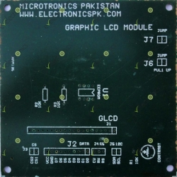 Graphic LCD Module