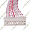 10 Way Plug with Lead JST-XH